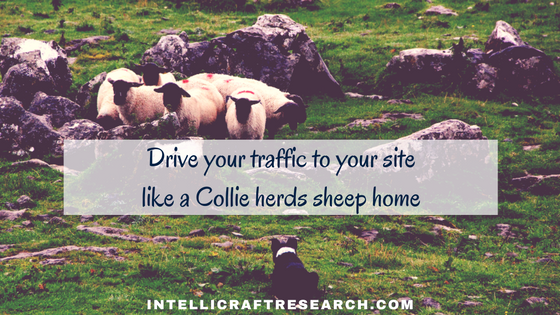 drive traffic to your site like herding sheep home