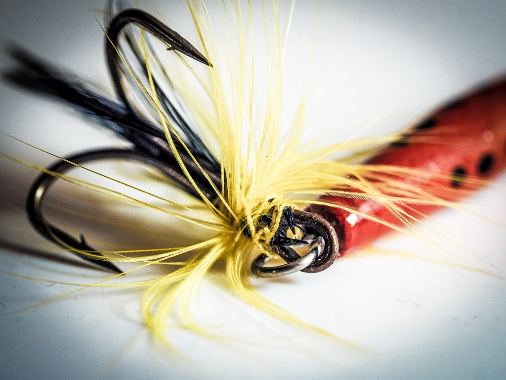 fishing lure hook grab attention
